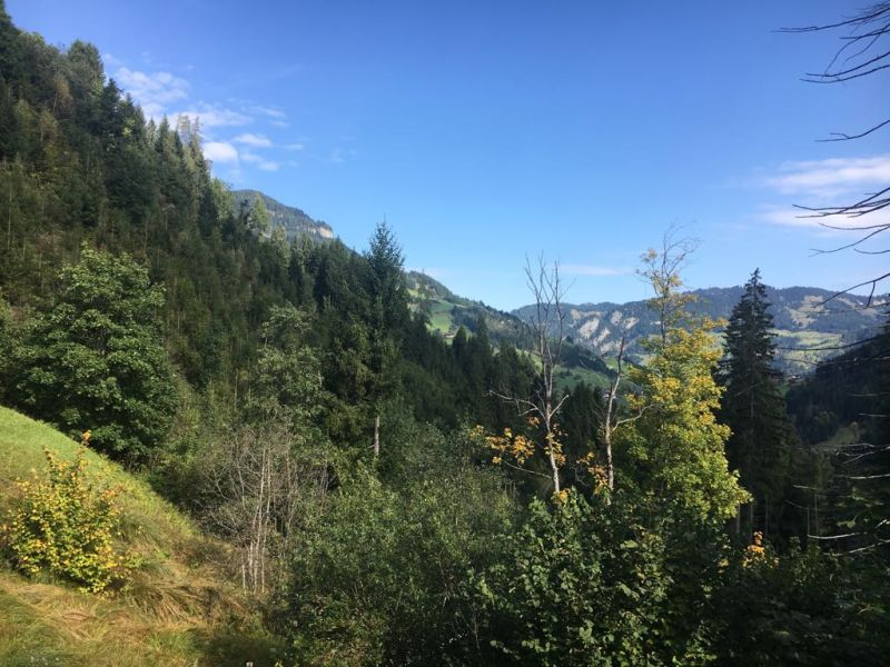 A_Grossarltal_HotelNesslerhof_Wanderung_Aussicht