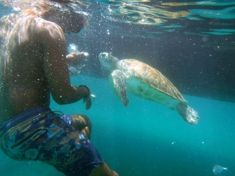 Barbados_Katamarantour_ElTigre_2