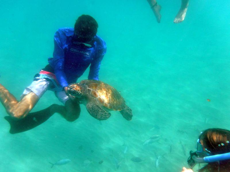 Barbados_Katamarantour_ElTigre_3