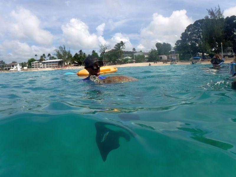 Barbados_Katamarantour_ElTigre_4