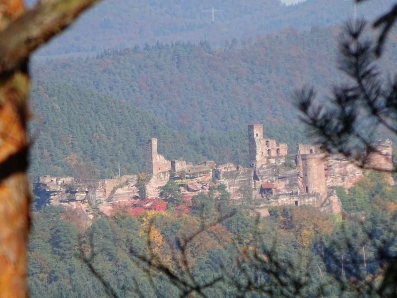 D_Pfalz_Napoleonsteig_4