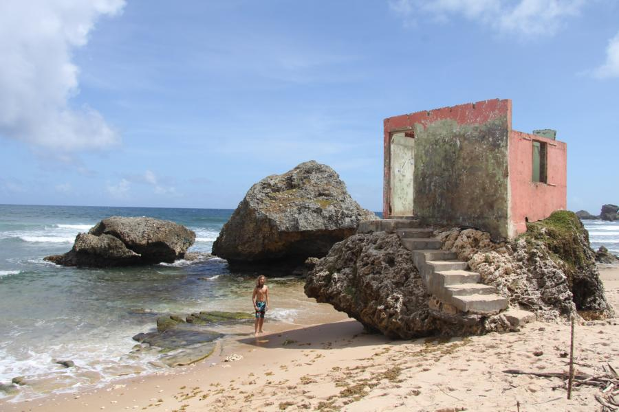 Ruine_Barbados_Batsheba_1