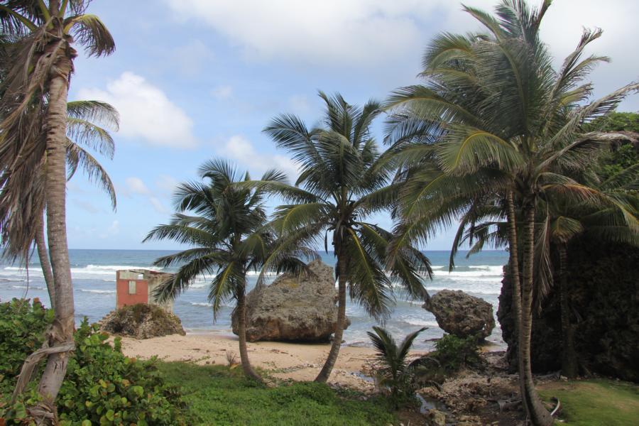 Ruine_Barbados_Batsheba_10