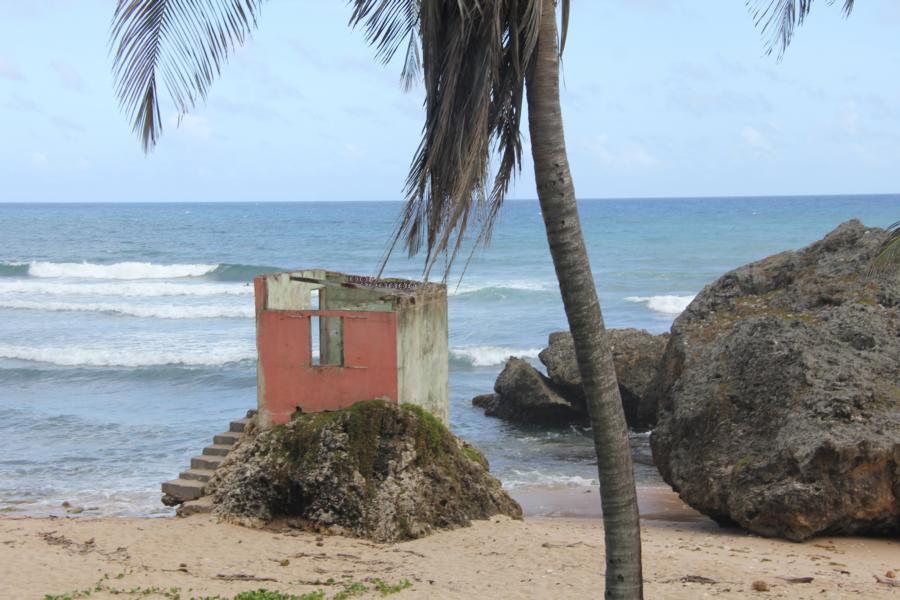 Ruine_Barbados_Batsheba_4