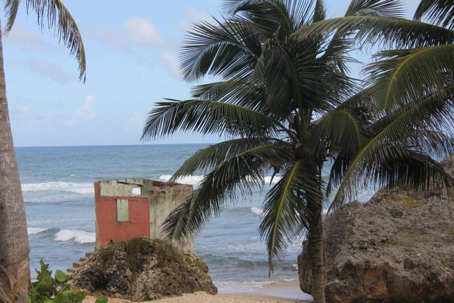 Ruine_Barbados_Batsheba_5
