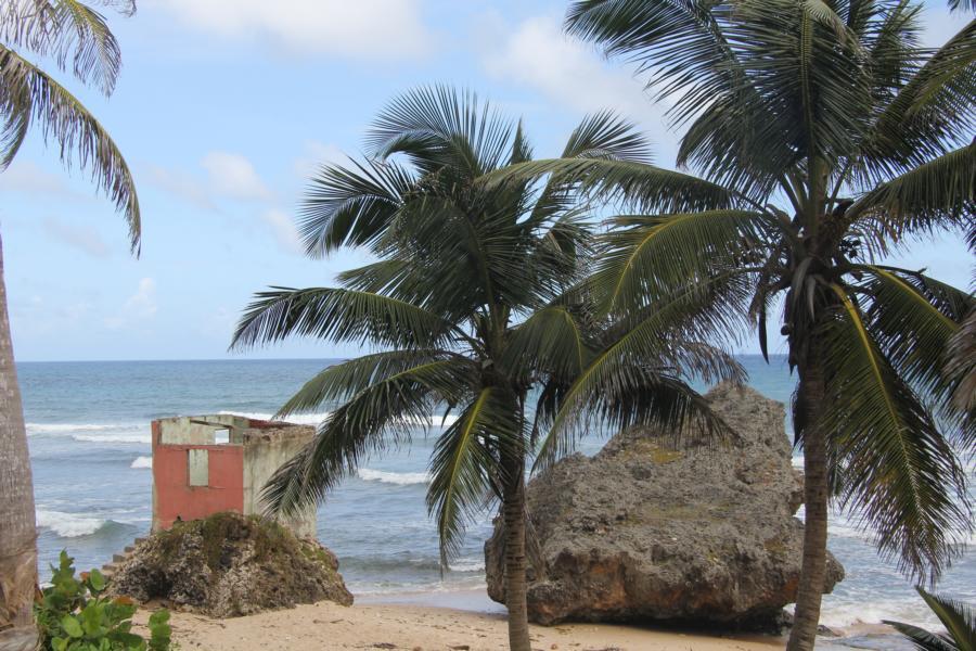 Ruine_Barbados_Batsheba_7