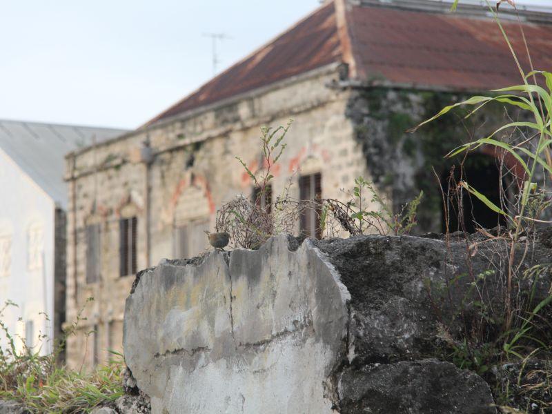 Ruinen_Barbados_AlteLagerhalle_5